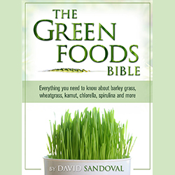Buch: The Green Foods Bible, David Sandoval